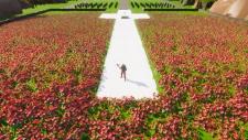 Vimy Ridge cenotaph