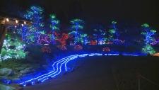 The  2018 Winter Light Festival at the Nikka Yuko Japanese Garden in Lethbridge, Alberta