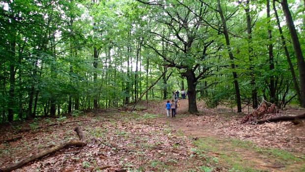 Eagle Ridge project area