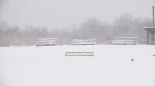 Generic snowy field