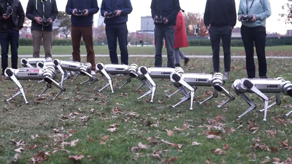 Mechanical engineers with MIT's Biometric Robotics Laboratory control 'Mini Cheetah' robots. (Biomimetics MIT)