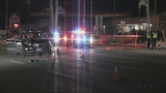 Two pedestrians struck and killed by vehicle