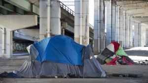 Tents sit below the Gardiner Expressway in Toronto on Wednesday January 16, 2019. (THE CANADIAN PRESS / Frank Gunn)
