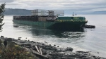 A barge that ran aground on Quadra Island on Saturday evening is expected to be refloated Sunday afternoon, according to the Canadian Coast Guard. (Gord Kurbis/CTV Vancouver Island)