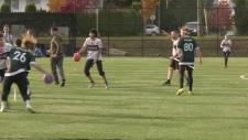 Quidditch championships in Surrey