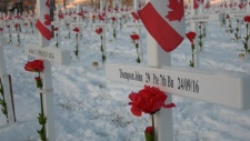 Field of Crosses, Memorial Drive, Calgary