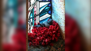 A pigeon roosts in a nest built of poppies taken from the Tomb of the Unknown Australian Soldier at the Australian War Memorial in Canberra (Australian War Memorial)