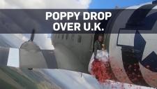 Poppy drop