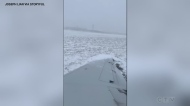 Plane skids off runway in Chicago