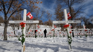 Visitors walk through some of the 3500 cross marking the sacrifice of southern Albertans during a Remembrance Day service in Calgary, Monday, Nov. 11, 2019.THE CANADIAN PRESS/Jeff McIntosh