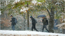 People make their way through the snow at the University of Toronto's campus in Toronto on Monday, November 11, 2019. THE CANADIAN PRESS/Nathan Denette