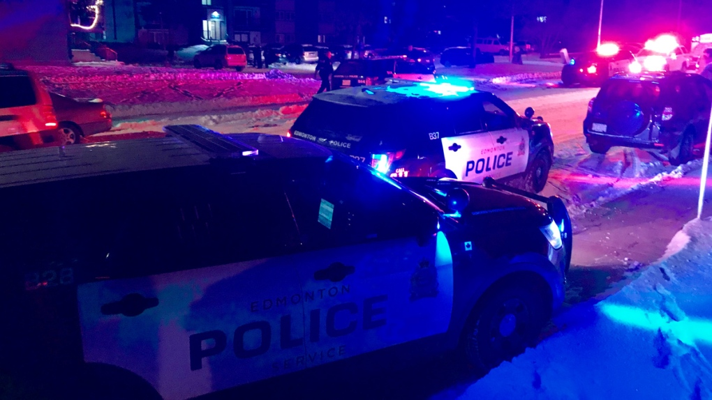 Several police cruisers and officers with long guns respond to northeast Edmonton scene