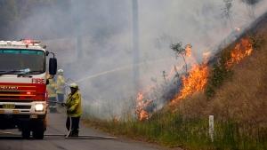In Monday, Nov. 11, 2019, photo, firefighters work on a controlled burn in Koorainghat, New South Wales state, Australia. (Darren Pateman/AAP Images via AP)
