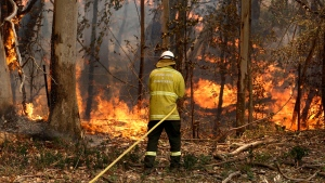 A National Parks and Wildlife crew member fights flames at Half Chain road at Koorainghat, near Taree in New South Wales state Tuesday, Nov. 12, 2019. (Darren Pateman/AAP Images via AP)