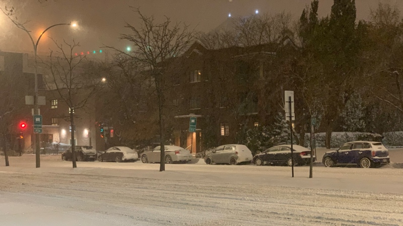 Montreal is blanketed in snow (Nov. 12, 2019).