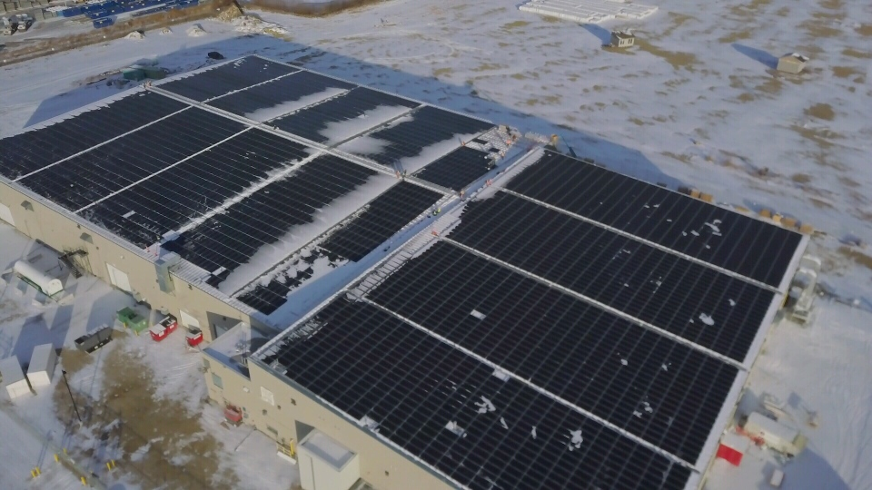Solar Panels Cannabis facility