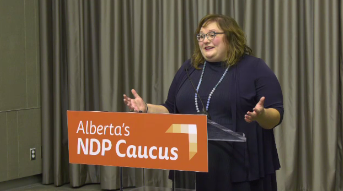 Alberta NDP Education Critic Sarah Hoffman wants Premier Jason Kenney to denounce a funding model proposed in central Alberta. Nov. 12, 2019. (CTV News Edmonton)