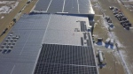 A cannabis company has unveiled what it claims is the largest solar panel array in the Canadian pot business.