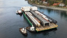Questions arise over grounded Quadra Island barge
