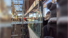 LRT Riders pack the platform at Blair Station Nov. 13, 2019 (Photo courtesy of Megan MacDonald / Twitter)