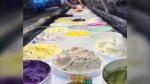Vancouver's La Casa Gelato has 238 flavours on site. (La Casa Gelato/Facebook)