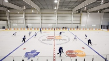 Members of the Toronto Maple Leafs take part in a team skate at the Mastercard Centre for Hockey Excellence, the club's new practice facility, in Toronto on Tuesday, September 8, 2009. (THE CANADIAN PRESS/Darren Calabrese)