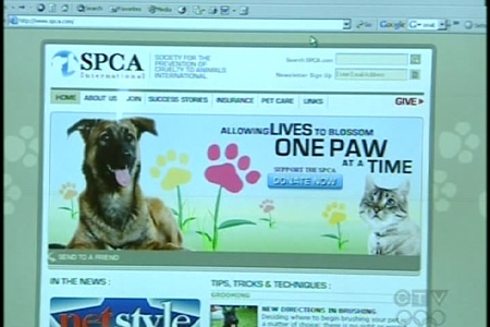The Canadian SPCA, based in Montreal, believes it should own the spca.com domain name (Sept. 8, 2009)