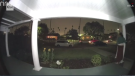 A woman investigates the sounds of a person screaming for help, caught on a doorbell camera in Los Angeles (CNN/KTLA)