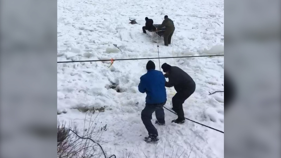 Residents worked together to rescue the deer that fell through the ice on the Batiscan River (image: Jacinthe Arsenault / Facebook)