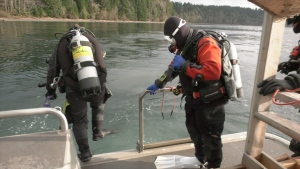 "After exploring the reef where the American barge ""Nana Provider"" ran aground, members of a Campbell River dive team are pleased the damage is far less than they feared. (CTV)"