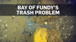 1.8 million pieces of trash at bottom of Bay of Fu