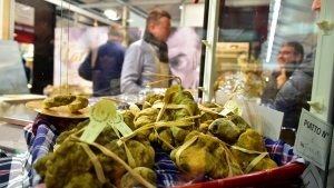In this photo taken on Saturday, Nov. 9, 2019, a collection of white truffles are displayed against the backdrop of the Alba Truffle Fair, where many of the region's 4,000 truffle hunters trade the delicacy during October and November each year. (AP Photo/Martino Masotto)
