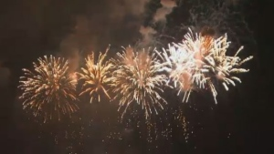 Regina police responded to eight fireworks complaints in the city on Canada Day, though they estimate the number was higher.
