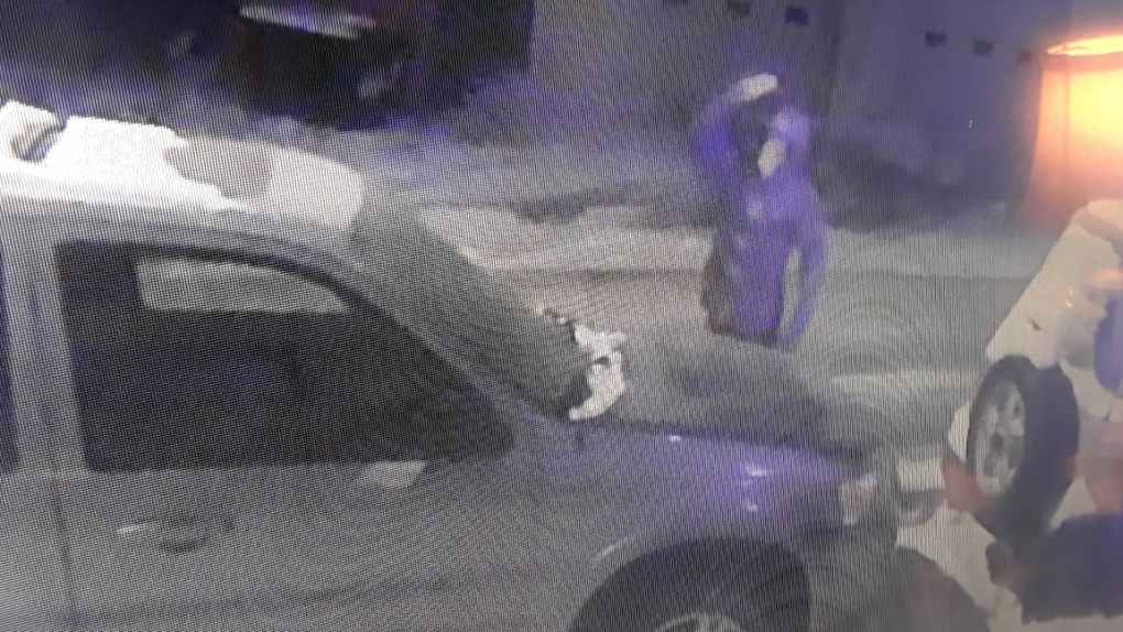 Police looking for 'egging' suspect after vehicle reportedly vandalized for seventh time