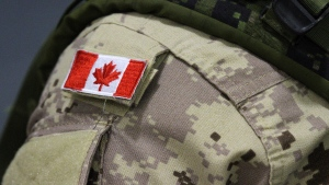 The Department of National Defence says 16 military members linked to hateful actions or groups in a report last year have been warned, disciplined or order to take counselling but allowed to remain in uniform. (THE CANADIAN PRESS/Lars Hagberg)