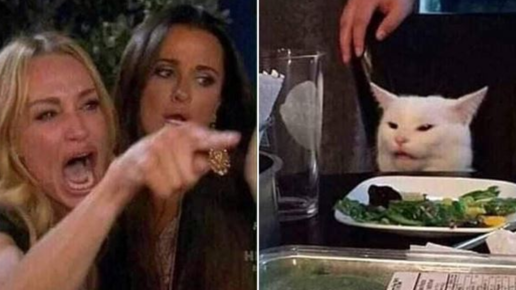 Woman yelling at cat meme: His name is Smudge, he's from Ottawa and he hates salad