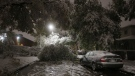 CTV National News: Winter is coming