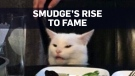 Meet the feline face that generated a wave of meme