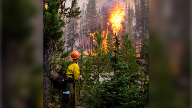 In this Aug. 7, 2019 file photo released by U.S. Forest Service, a firefighter watches flames from the Nethker Fire engulf trees at Payette National Forest near McCall, Idaho. Environmental groups say the U.S. Forest Service is ignoring a 9th U.S. Circuit Court of Appeals ruling by restarting a giant forest project in Idaho and have filed another lawsuit seeking to stop the project a second time. (U.S. Forest Service via AP, File)