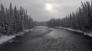The Wedzin kwa River is shown near Houston, B.C., on January 9, 2019.THE CANADIAN PRESS/Chad Hipolito