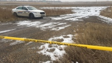 A 33-year-old woman was found dead north of Highway 16 in the early morning of Sunday, Nov. 17, 2019. (CTV News Edmonton)