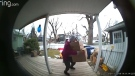 A door bell camera video appears to show two people taking a shipment of medical supplies from the porch of a Riversdale home.