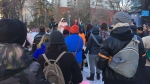 Transgender people and supporters gathered for a march on the Alberta legislature in Edmonton for the Trans Day of Remembrance Wednesday, Nov. 20, 2019. (CTV News Edmonton)