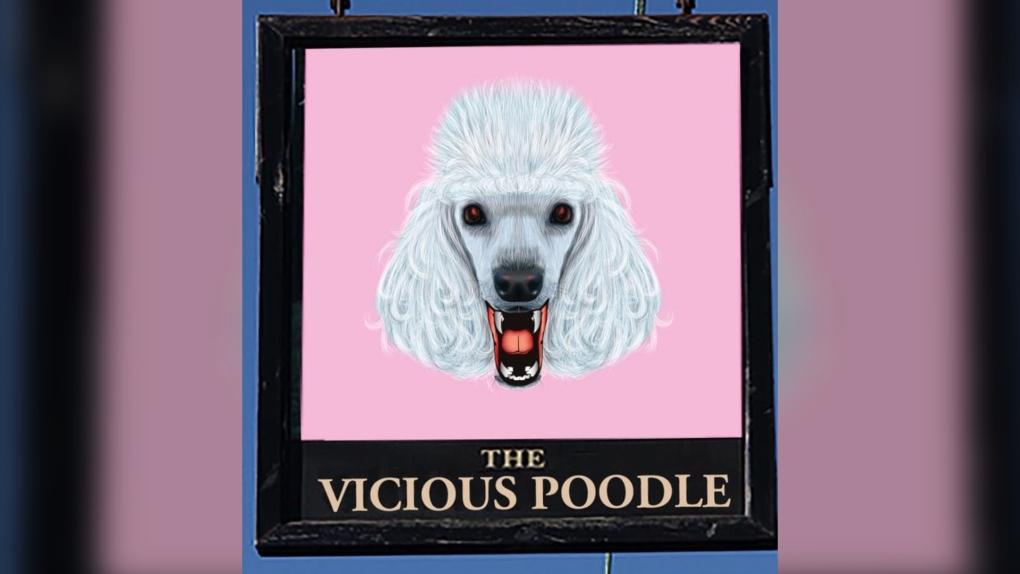 Vicious Poodle
