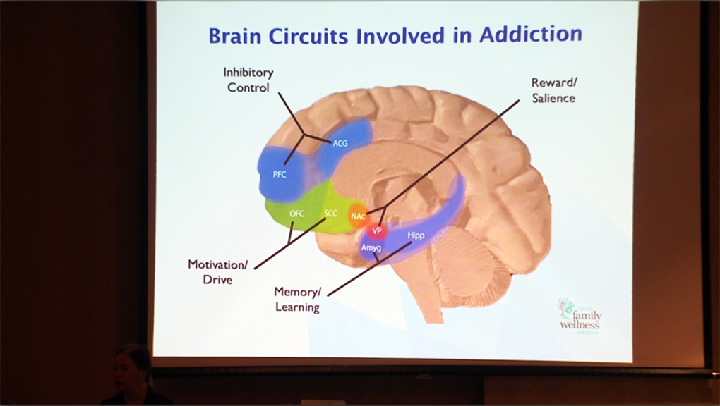 National conference links brain development to addiction