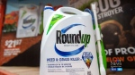 Class-action lawsuit against makers of Roundup