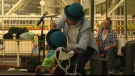 Street performers, Stollery Children's Hospital