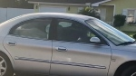 Dog drives car around in circles for an hour