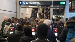 Long lines at St. Laurent station as replacement buses are deployed again on Thursday, Nov. 22, 2019. (@aguyinhis40s/Twitter)