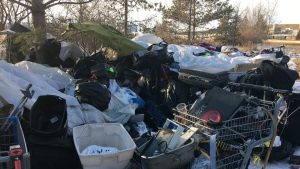 A homeless camp in Edmonton on Nov. 22, 2019. (Dan Grummett/CTV News Edmonton)